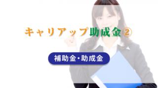 キャリアップ助成金(2)【補助金・助成金】