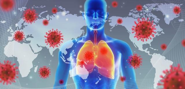 新型コロナウイルスの日本における現状