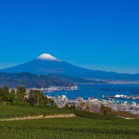 静岡県静岡市 建設業者様が選ぶ安心して利用出来るファクタリング会社は?